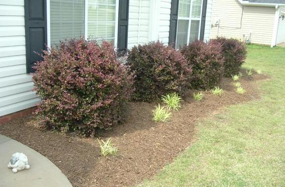 Fresh Mulch Adds the Curb Appeal Necessary to Sell a House!